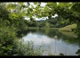 CHata Sergej - chata na polo-samote na lúke pod lesom